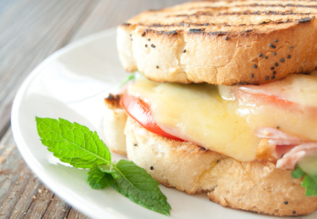 melted cheese: Grilled cheese sandwich