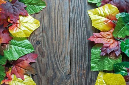 leaves frame: Hojas de oto�o marco