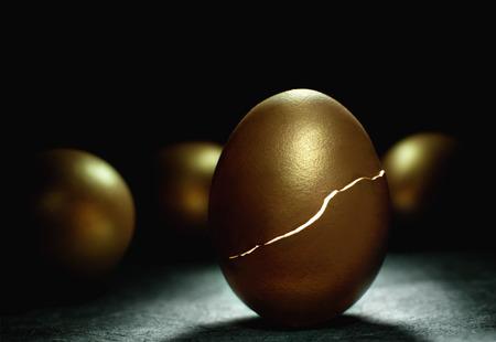 retirement nest egg: Golden nest egg