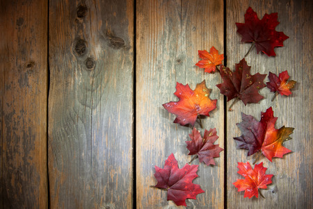 madera rústica: Hojas de otoño sobre fondo de madera vieja