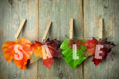 Autumn: Ventas de otoñales  Foto de archivo