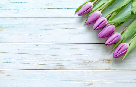 Tulips on a wooden background with space