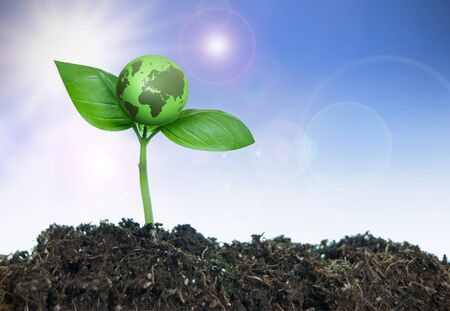 green world: New life