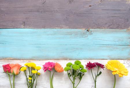 Primavera frontera de la flor del verano Foto de archivo - 55315016