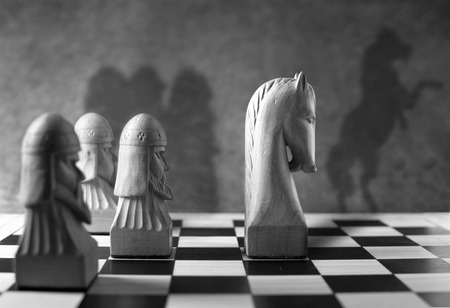 rearing: Chess piece with a rearing horse as shadow