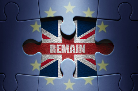european: European referendum concept