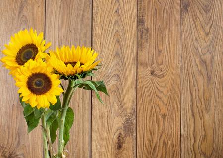 garden flowers: Summer sunflowers background