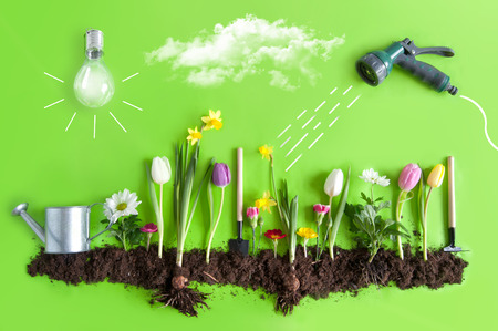 Spring flower bed garden with clouds, light bulb as the sun, and hose pipe with a sketch of water being sprayed