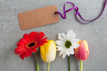 Spring flowers on a grey stone backdrop with blank greeting card Standard-Bild - 119056736