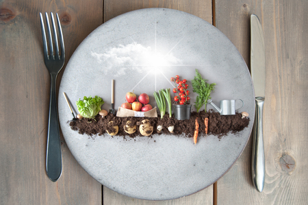 Organic fruits and vegetables growing in earth on a kitchen plate Standard-Bild - 121597180