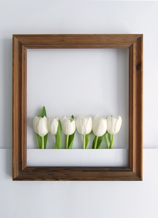 Wooden frame around white spring tulips with space Standard-Bild - 121597187