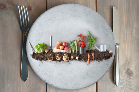 Organic fruits and vegetables growing in earth on a kitchen plate Standard-Bild - 121597197