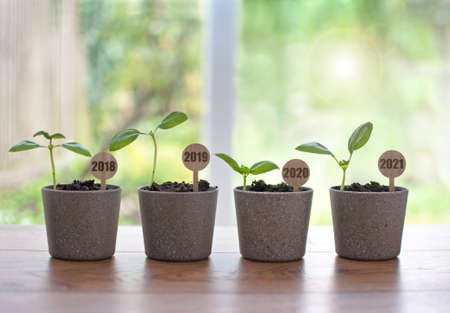 Business recovery concept, four seedling pots labeled 2018 to 2021