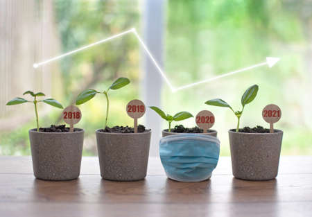 Business recovery concept, four seedling pots labeled 2018 to 2021 with a facemask around 2020 Standard-Bild