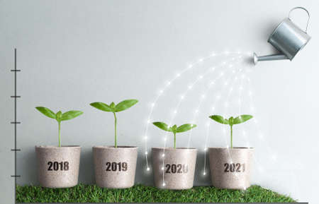 Year by year business growth comparison concept from 2018 to 2021, new seedlings in plant pots being watered with streams of light