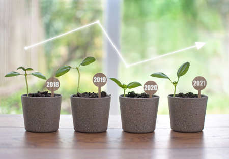 Business recovery concept, four seedling pots labeled 2018 to 2021 with growth line