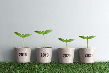 Year by year business growth comparison concept from 2018 to 2021, new seedlings in plant pots