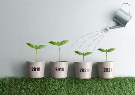 Year by year business growth comparison concept from 2018 to 2021, new seedlings in plant pots, financial stimulus