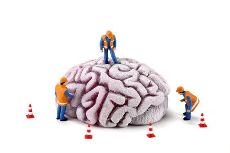 psychiatry: Concept image of miniature construction workers inspecting a brain. There are small caution cones around the brain. White background. Stock Photo