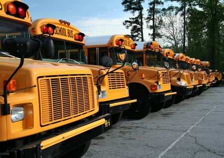 school buses: A long row of parked public school buses.