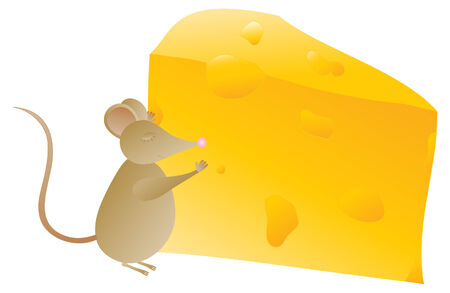 obsession: A Mouse and his Cheese
