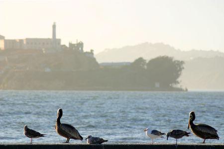 Alcatraz prison in San Francisco California. photo