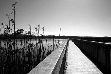 Boardwalk across a local lake Stock fotó