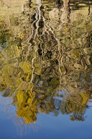 Trees reflected in moving water