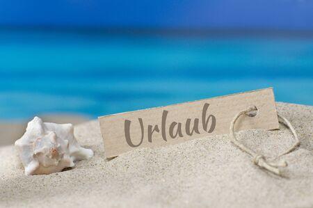 sea slug: Dream beach with sea slug and shield