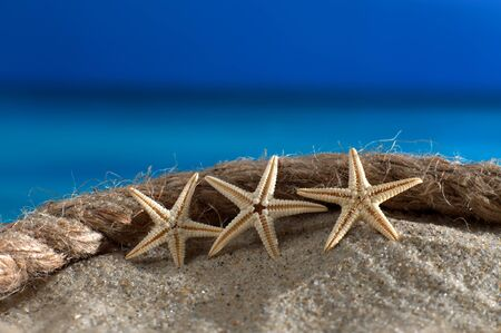 macroshot: Starfish and rope on the beach in front of an azure sea