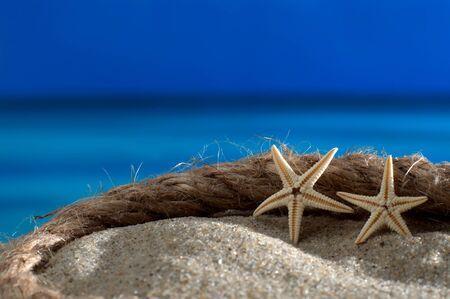 meer: Seesterne und Bootstau am Strand vor azurblauem Meer und Horizont