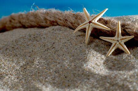 meer: Makroaufnahme Seesterne und Seil am Strand vor azurblauem Meer