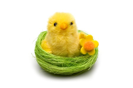 Easter chick in the nest isolated on white Stok Fotoğraf