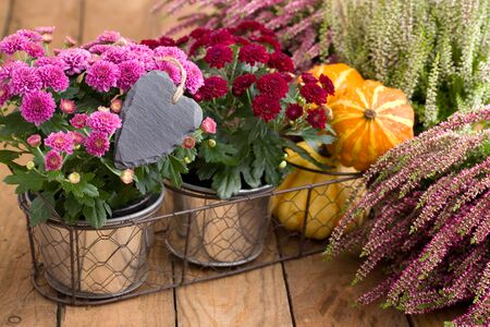 Autumnal decoration with colorful flowers and heart