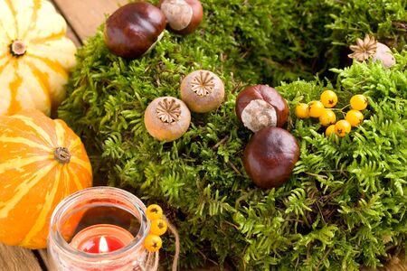 Autumnal decoration - moss wreath and pumpkins on wood