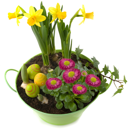 Easter decoration - pot with spring flowers and colorful eggs