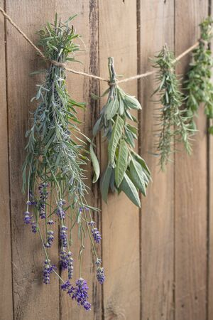Culinary herbs drying in front of a rsutic wooden background