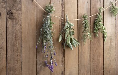 Herbs drying in front of a rustic wooden background Stok Fotoğraf