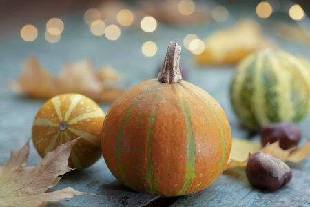 Autumn mood - colorful pumpkin and lights on turquoise wood