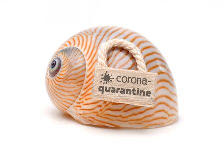 Coronavirus quarantine - snake shell with lettering Stok Fotoğraf