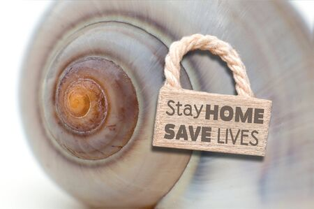 Coronavirus - Stay home save lives - snake shell with door sign and lettering 免版税图像