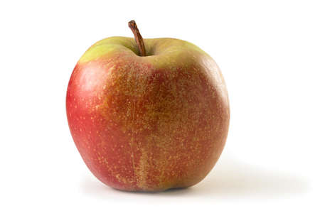 Boskop apple isolated against white background