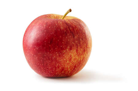 Jonagold apple isolated against white