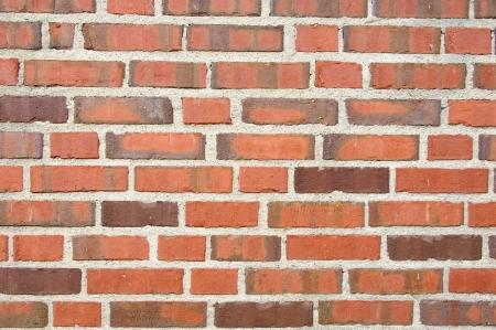 Texture of brick wall. Texture photo