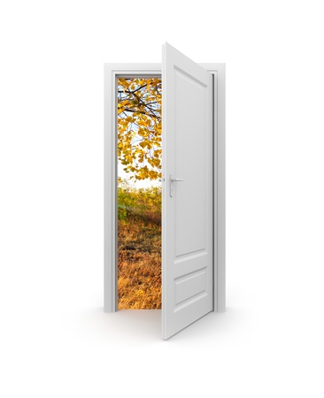 door leaf: Conceptual image. Isolated on white Stock Photo