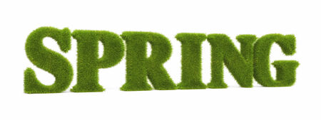 grass plot: Spring Stock Photo