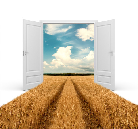 countryside: Road through wheat field in opened door Stock Photo