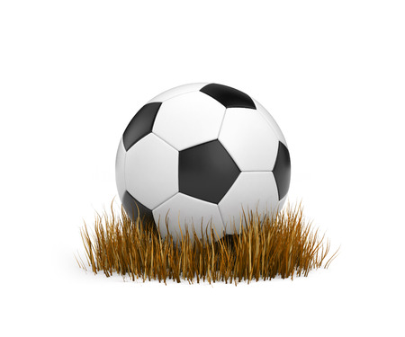 withered: Ball on the withered grass. 3d illustration Stock Photo