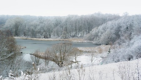 snow  snowy: Snowy pond with Trees in snow Stock Photo