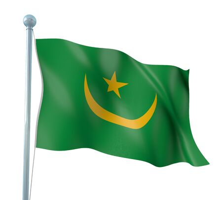 Mauritania Flag Detail Render